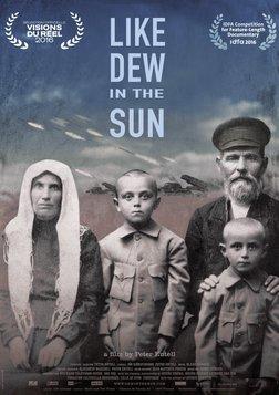 Like Dew in the Sun - Ukraine's Civil War