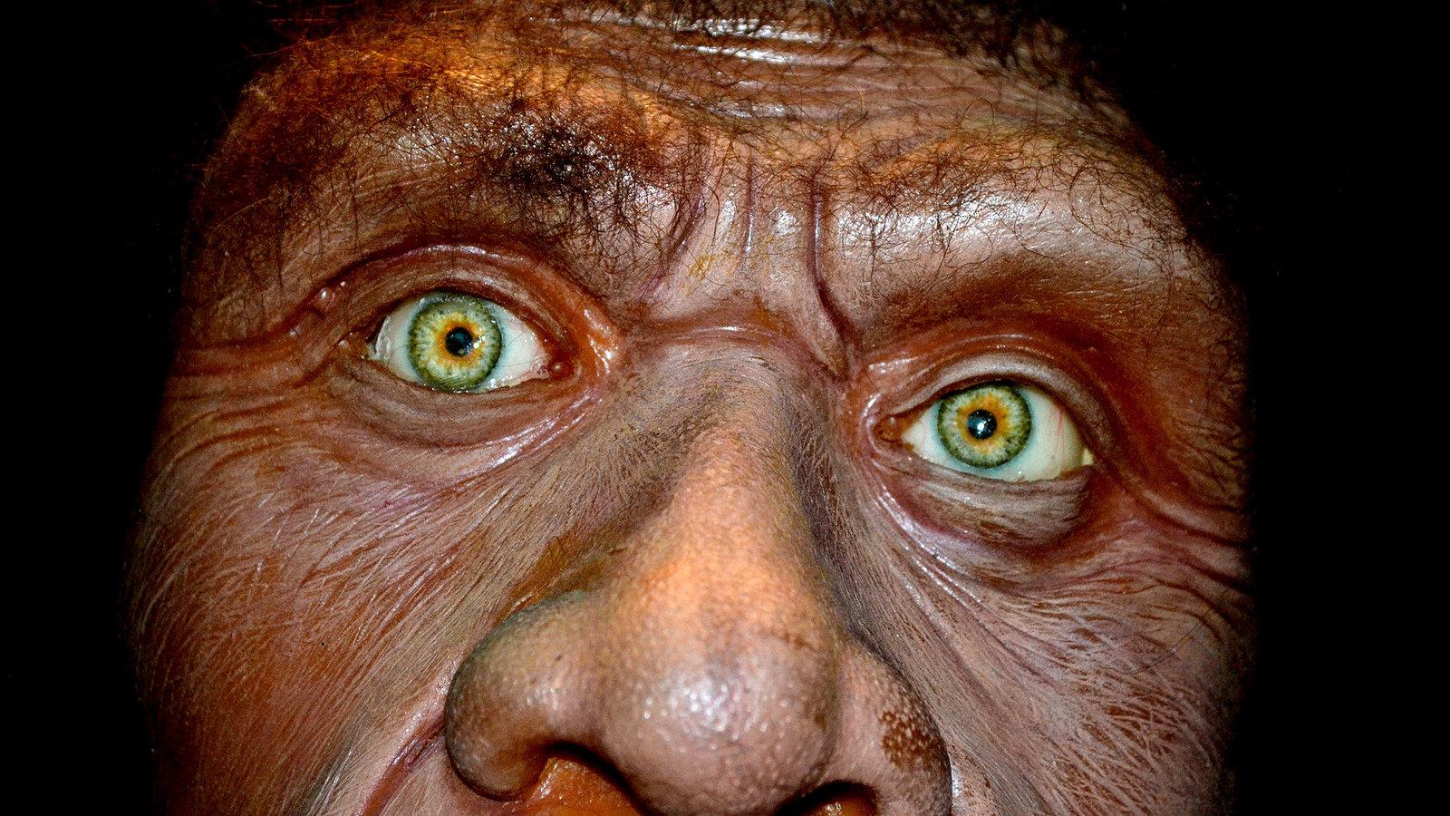 Secrets of the Dead - Caveman Cold Case