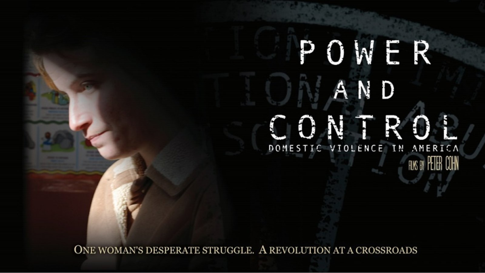 Power and Control - Domestic Violence in America