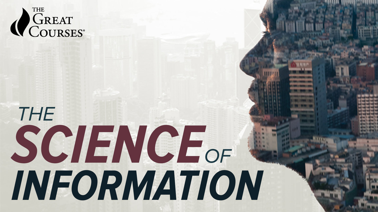 The Science of Information - From Language to Black Holes