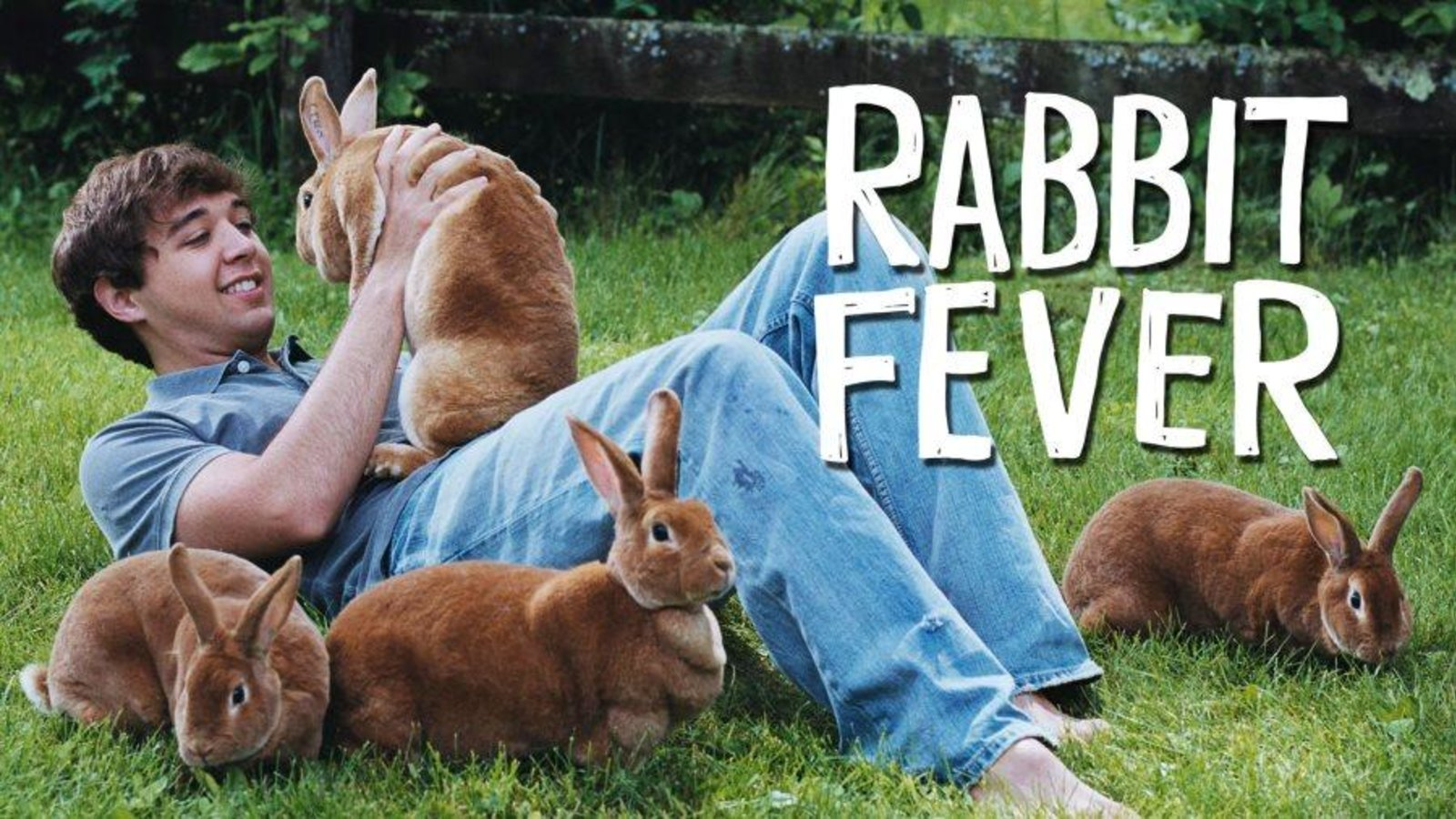 Rabbit Fever - Who Will Win Rabbit King & Queen?