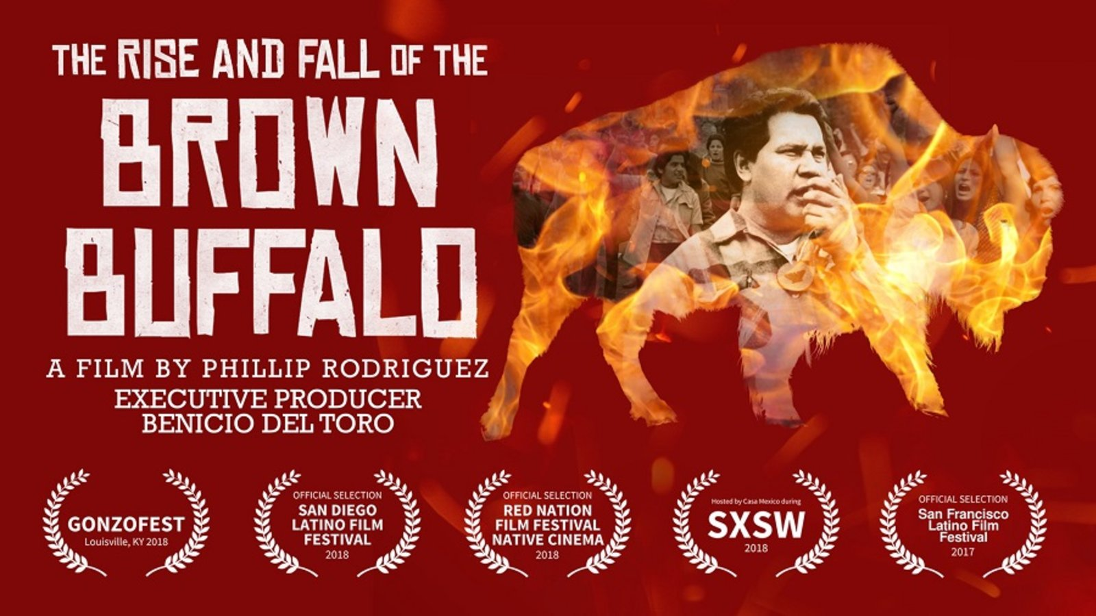 The Rise and Fall of the Brown Buffalo - Oscar Zeta Acosta: From Latino Activist to Dr. Gonzo
