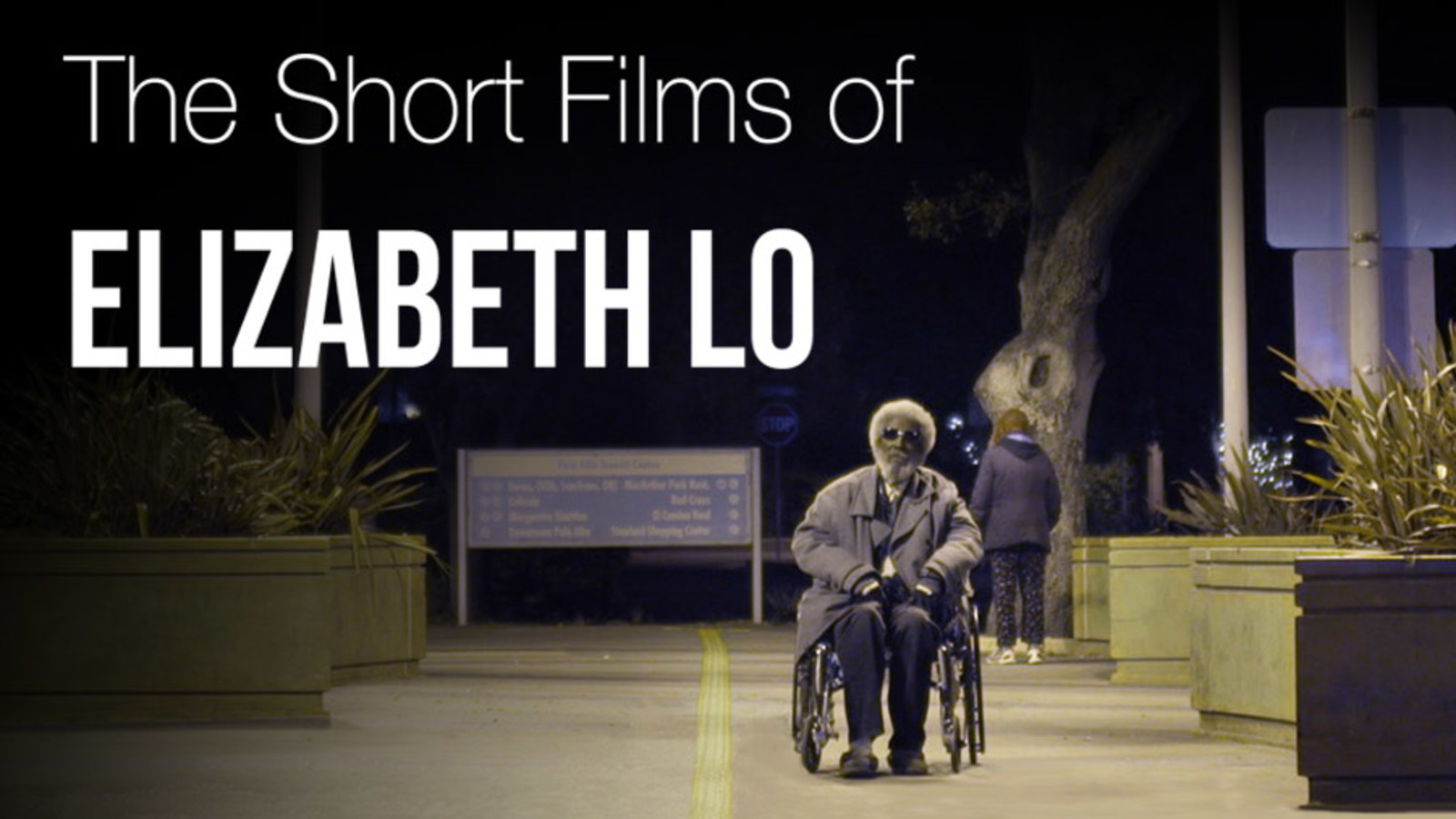 The Short Films of Elizabeth Lo - Short Documentaries on America's Overlooked Communities