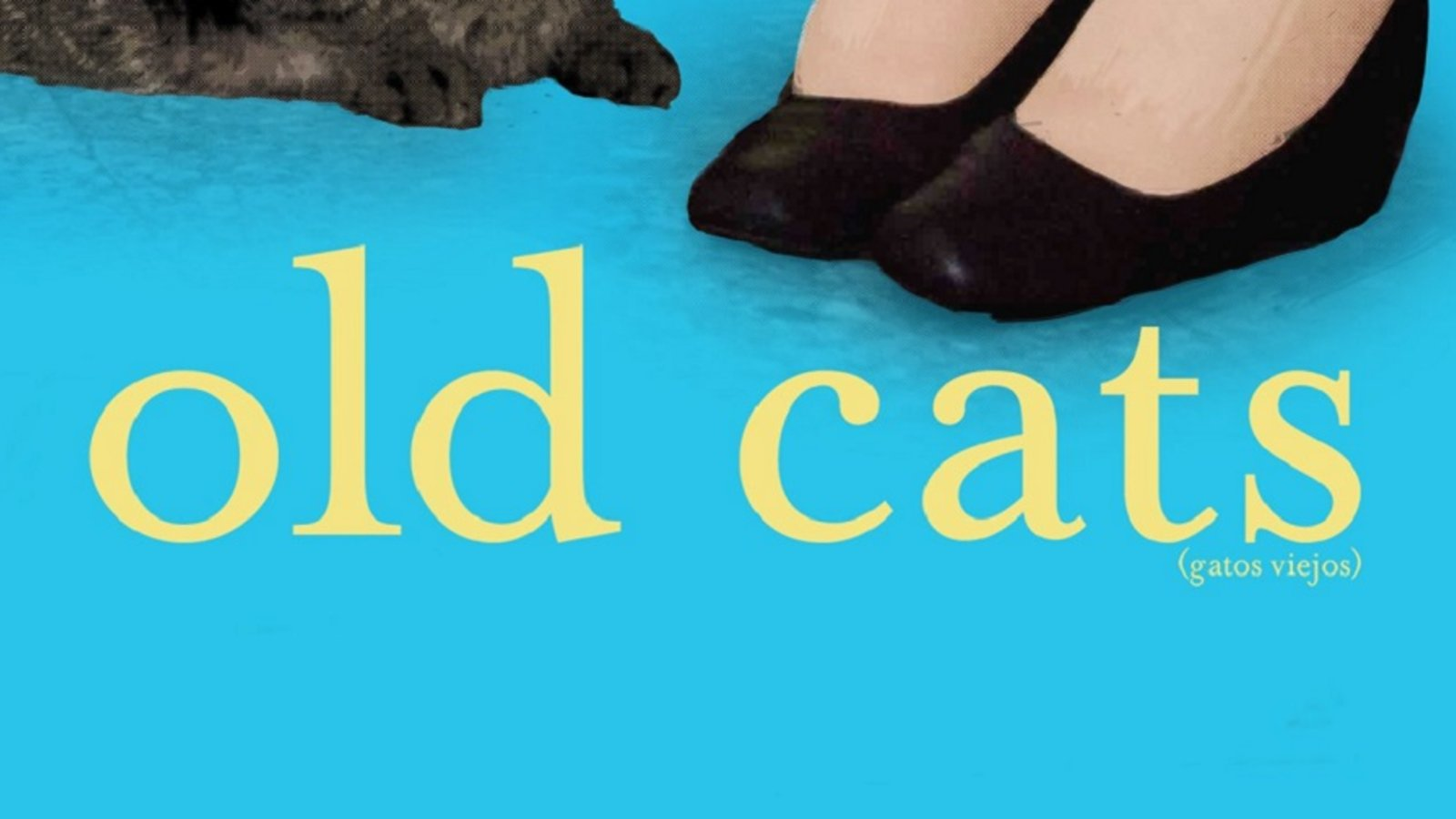 Old Cats - Gatos Viejos