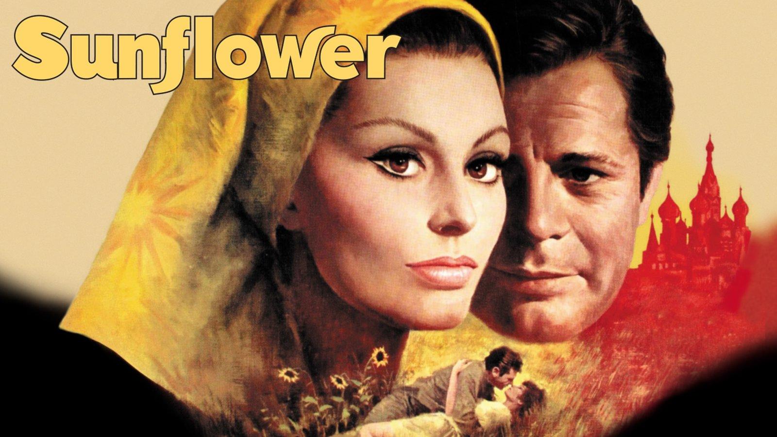 Sunflower - I girasoli