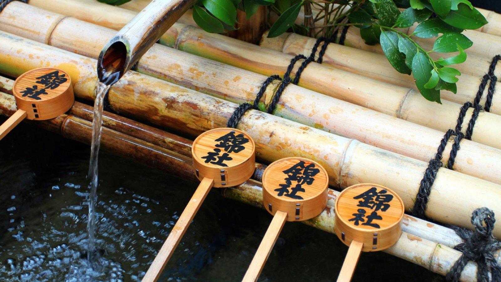 Related Traditions - Shinto and Tenrikyo