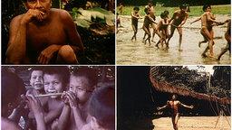 Yanomamo Shorts