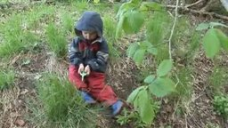 Outdoor Learning: A Year at Auchlone - Spring