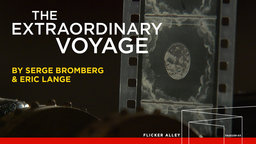 The Extraordinary Voyage (2011)