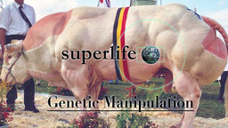 Superlife: Genetic Manipulation