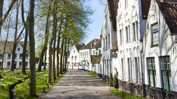 Bruges—Commerce and Community
