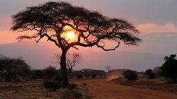The Beauty of African Mythology