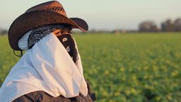 Rape in the Fields