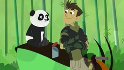 Panda Power Up!