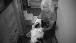 Last Stop in Santa Rosa - Profile on an Animal Hospice