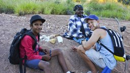 Honey Ants - Central Desert Alice Springs, Northern Territory