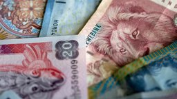 Investing in Foreign Assets