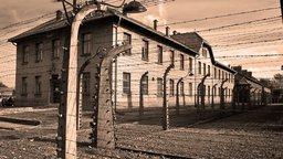 The Holocaust - 1933 - 45