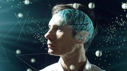 Mindsight: Understanding Your Inner Life